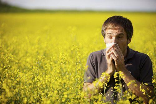 Мужчина на поле с цветами