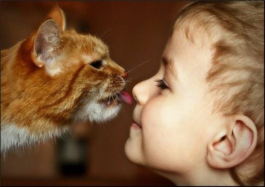 кот, ребенок