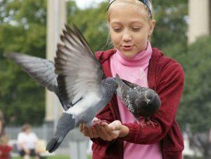 Девочка, птицы