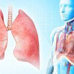 951 приказ по туберкулезу