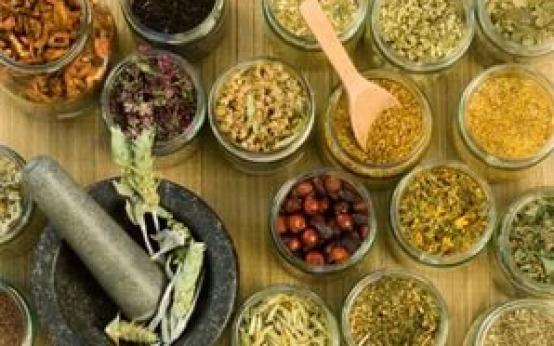 Какие травы помогают при бронхите и как их правильно пить