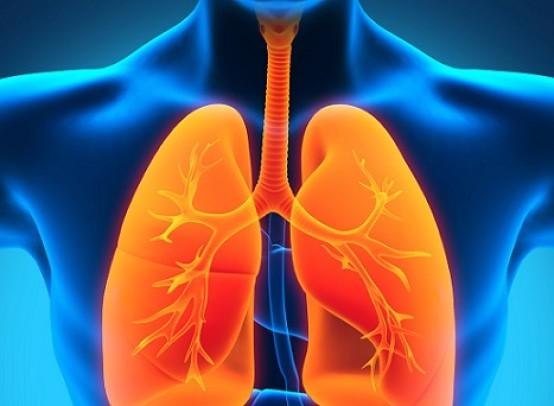 Как проявляется туберкулез легких и других органов