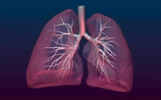 Как проявляется прикорневая пневмония у взрослых