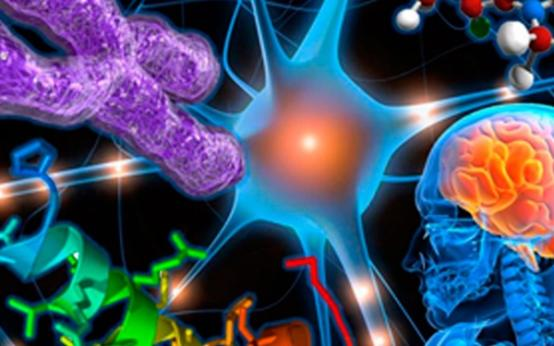 Что означают очаги глиоза в головном мозге и что с ними делать