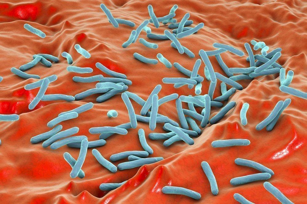 Микробактери
